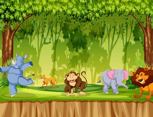 Animal selvagem na floresta Vetor grátis