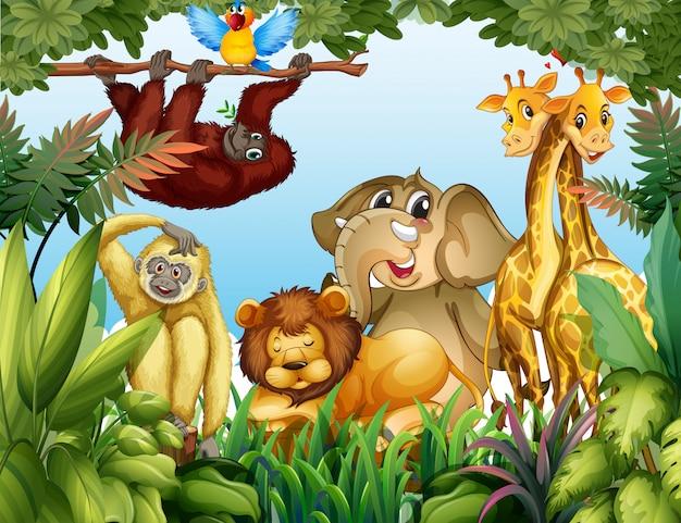 Animal selvagem na selva Vetor grátis