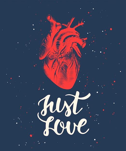 Apenas amor com esboço do coração anatômico gravado Vetor Premium