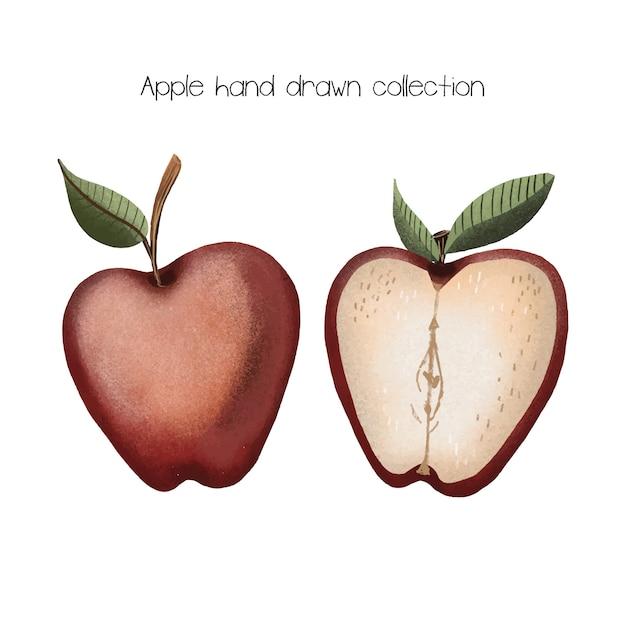 Apple mão coleção desenhada Vetor Premium