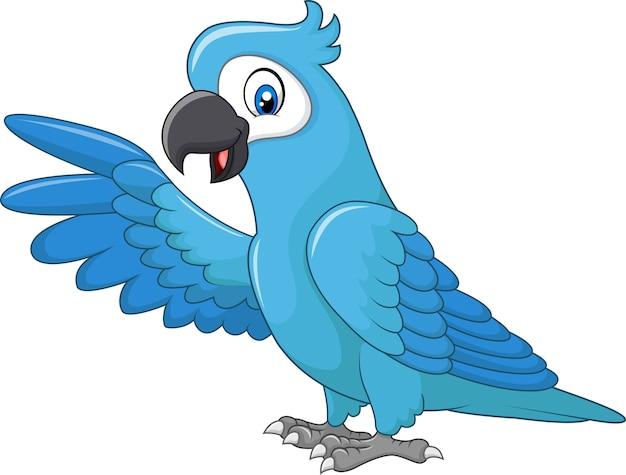 Vetor Premium Apresentacao De Arara Azul Engracado Dos Desenhos Animados