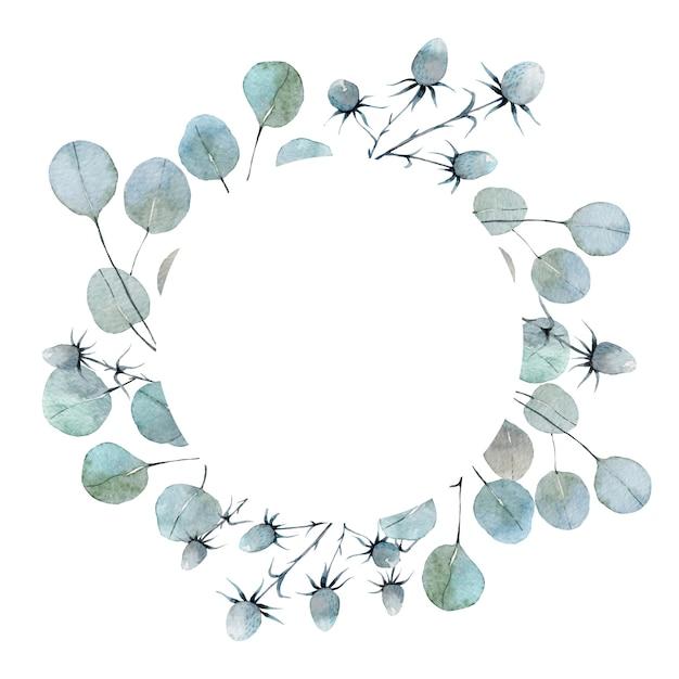 Aquarela borda redonda com folhas de eucalipto Vetor Premium