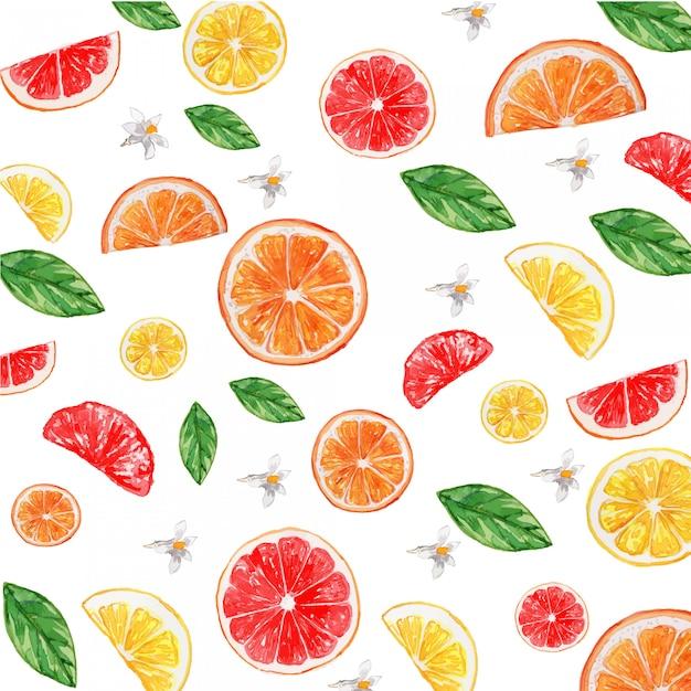 Aquarela cítrica limão laranja toranja flor sem costura padrão Vetor Premium
