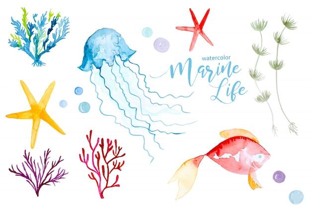 Aquarela colorida conjunto de plantas e animais marinhos Vetor Premium