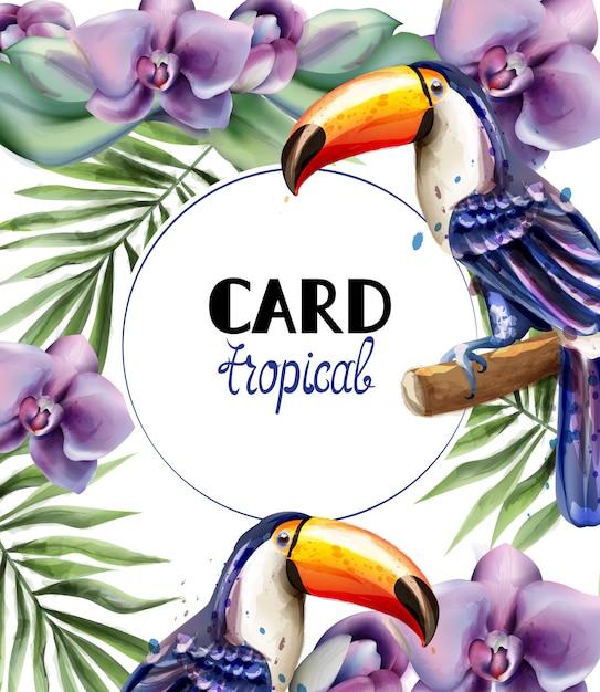 Aquarela de cartão trópico tucano Vetor Premium