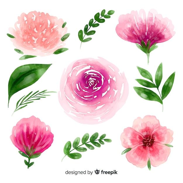 Aquarela flores e folhas de fundo Vetor grátis