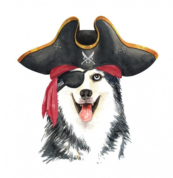 Aquarela husky siberiano com venda de pirata e chapéu. Vetor Premium