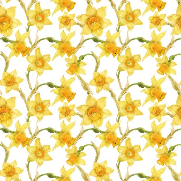 Aquarela padrão floral realista com narciso Vetor Premium