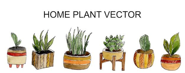 Aquarela plantas verdes em vasos isolados no branco Vetor Premium
