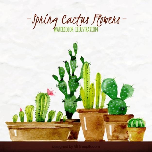 Aquarela primavera cactus ilustração Vetor Premium