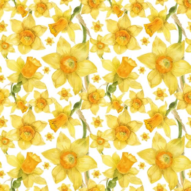 Aquarela realista padrão floral com narciso Vetor Premium