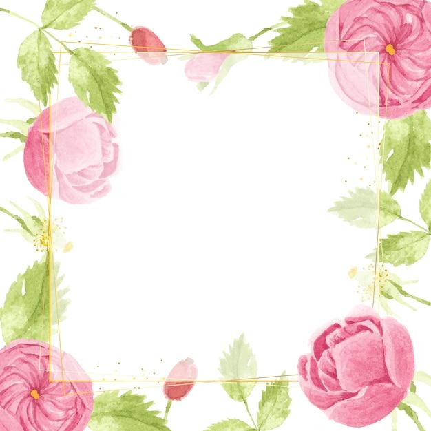 Aquarela rosa rosa inglesa com moldura quadrada dourada luxuosa Vetor Premium