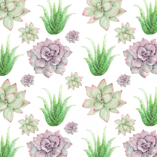 Aquarela sem costura padrão cacto flor e aloe vera Vetor Premium