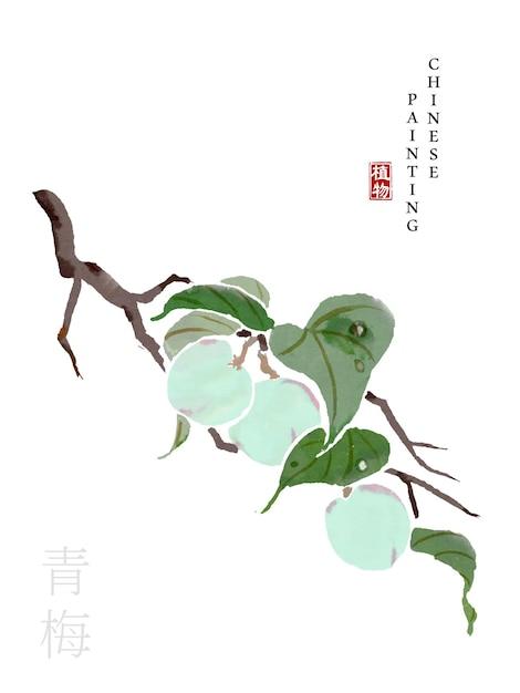 Aquarela tinta chinesa pintura arte ilustração natureza planta Vetor Premium