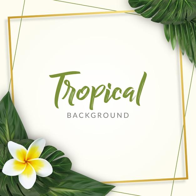 Aquarela tropical deixa fundo Vetor Premium