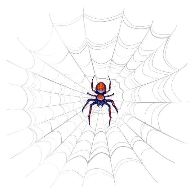 Aranha de perigo exótico com manchas vermelhas na web complicada em branco Vetor Premium