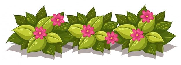 Arbusto frondoso com flores Vetor Premium