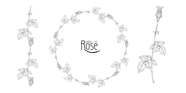 Arranjo floral de vetor com flores rosas e botões de rosa Vetor Premium