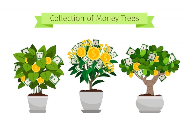 Árvore de dinheiro na coleção de vaso de flores Vetor Premium