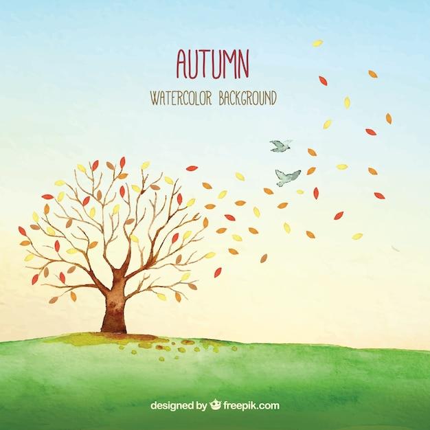 Árvore e pássaros de outono e aquarela Vetor grátis