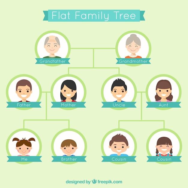 Árvore genealógica agradável no design plano Vetor grátis