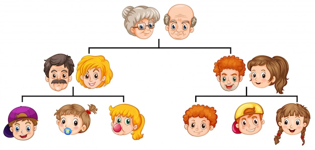 Árvore genealógica Vetor grátis