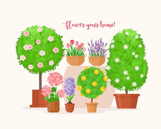 Árvore orgânica planta em vaso, lavanda ou flor de tulipa em vaso de flores, decoração de casa de varanda Vetor Premium