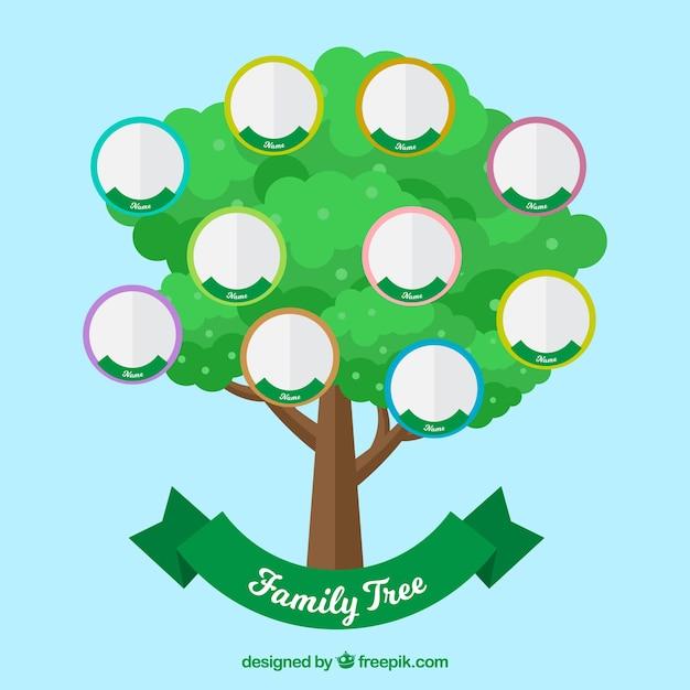 Árvore verde com círculos para membros da família Vetor grátis