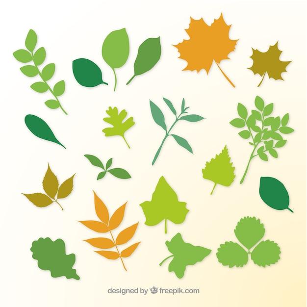 As folhas das plantas e galhos silhuetas Vetor grátis