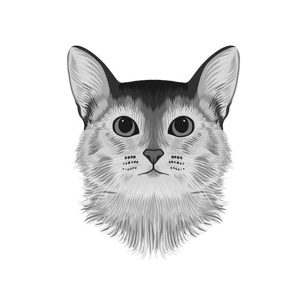 Avata da cabeça do gato abyssinian Vetor Premium