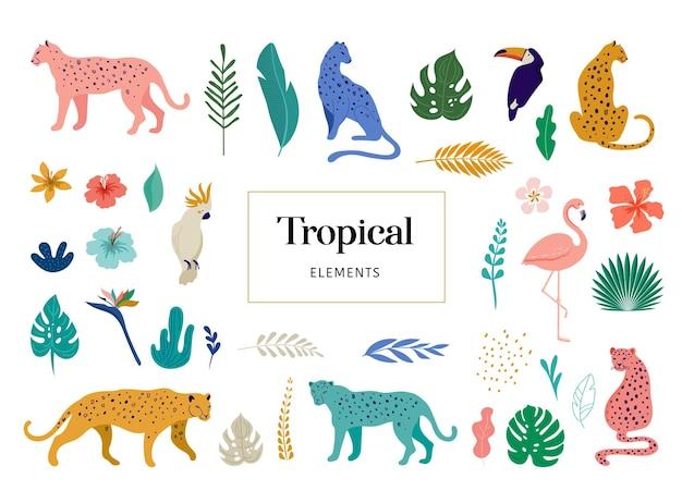 Aves e animais exóticos tropicais - leopardos, tigres, papagaios e ilustração vetorial de tucanos. animais selvagens na selva, floresta tropical Vetor Premium