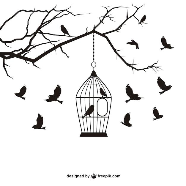Aves e gaiola vector Vetor grátis