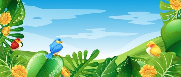 Aves na natureza paisagem Vetor grátis