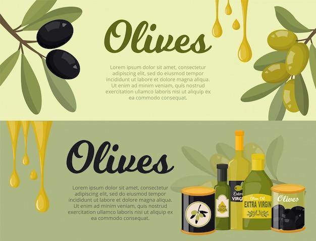Azeitonas conjunto de banners ilustração estilo simples. ramos de oliveira, folhas, garrafas de vidro com azeite virgem extra, azeitonas verdes e pretas em jar. Vetor Premium