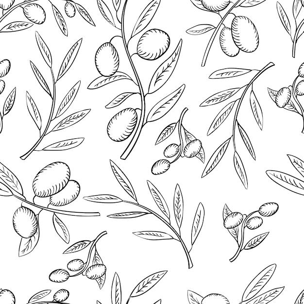Azeitonas sem costura padrão e ramo de oliveira com folhas em branco Vetor Premium