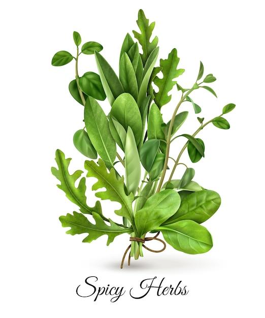 Bando realista de vegetais de folhas verdes frescas ervas picantes com tomilho de espinafre rúcula branco Vetor grátis