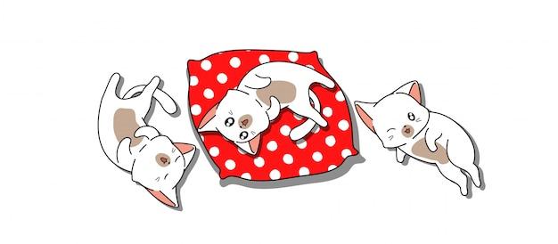 Banner 3 gatos bebê estão dormindo Vetor Premium