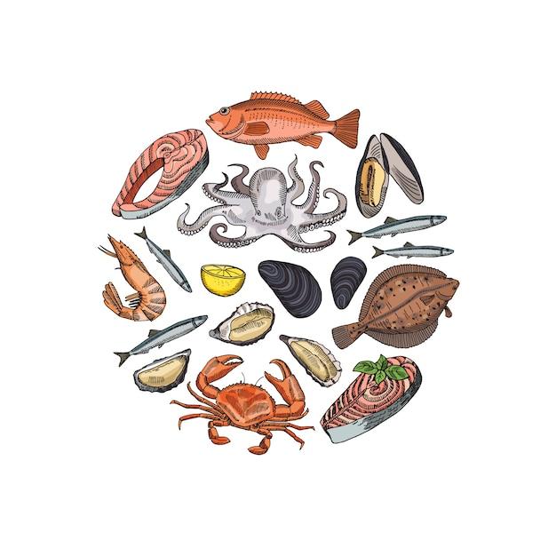 Banner com elementos de frutos do mar mão desenhada Vetor Premium