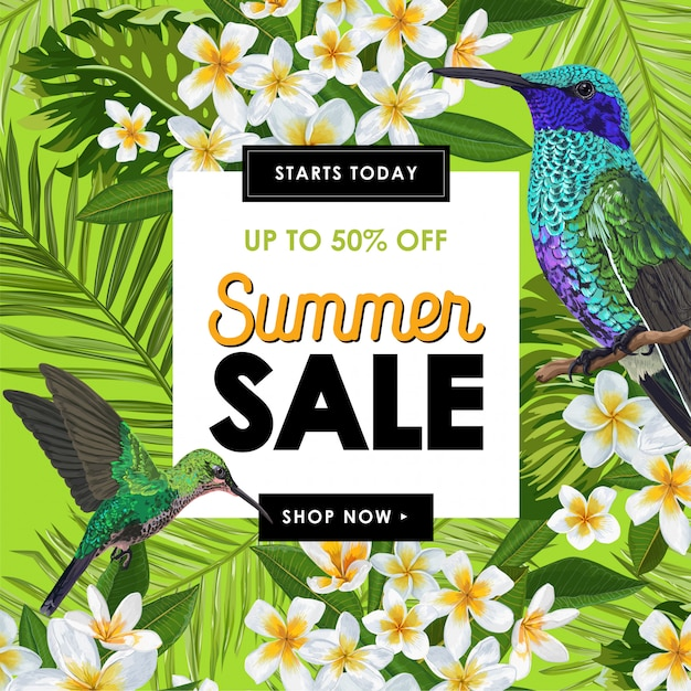 Banner de venda de verão com flores e beija-flores Vetor Premium