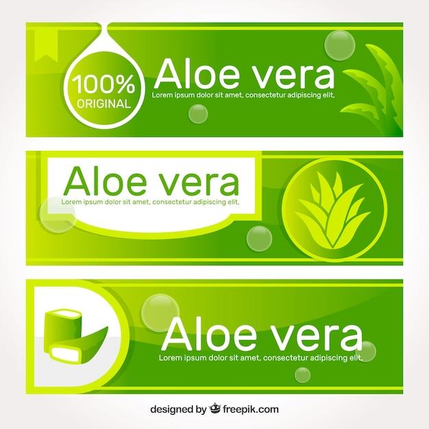Banner médico de aloe vera Vetor grátis