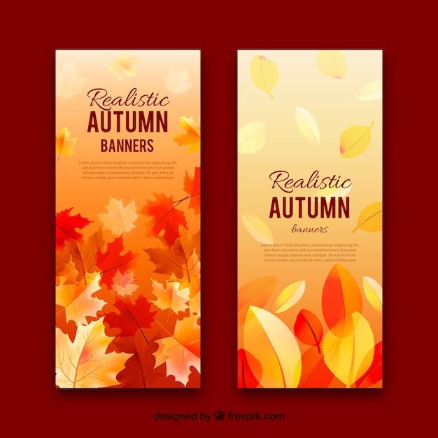 Banners outono com folhas Vetor grátis