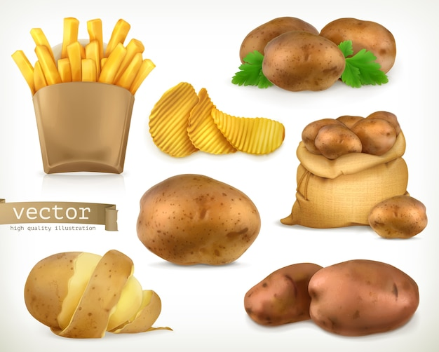 Batata frita e batatas fritas. conjunto de ilustração de vegetais Vetor Premium