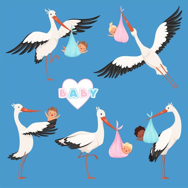 Bebê cegonha voadora, entrega de pássaros recém-nascidos bonitos crianças carregam caracteres de cegonha isolados Vetor Premium