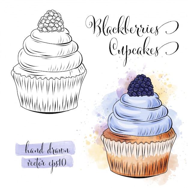 Bela mão desenhada em aquarela cupcakes com amoras Vetor Premium
