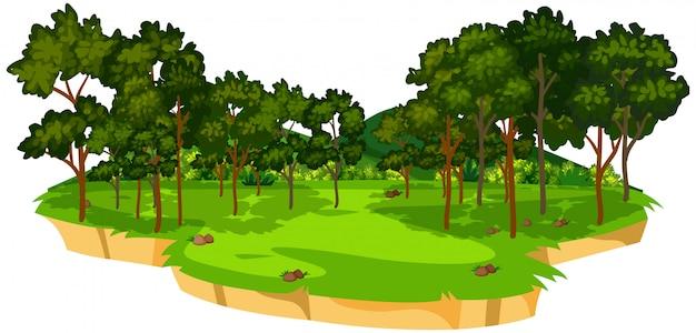 Bela natureza verde paisagem Vetor Premium