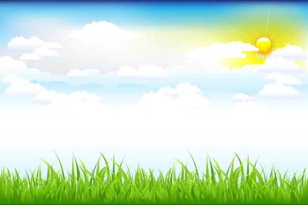 Bela paisagem com grama verde e céu azul, nuvens e sol Vetor Premium