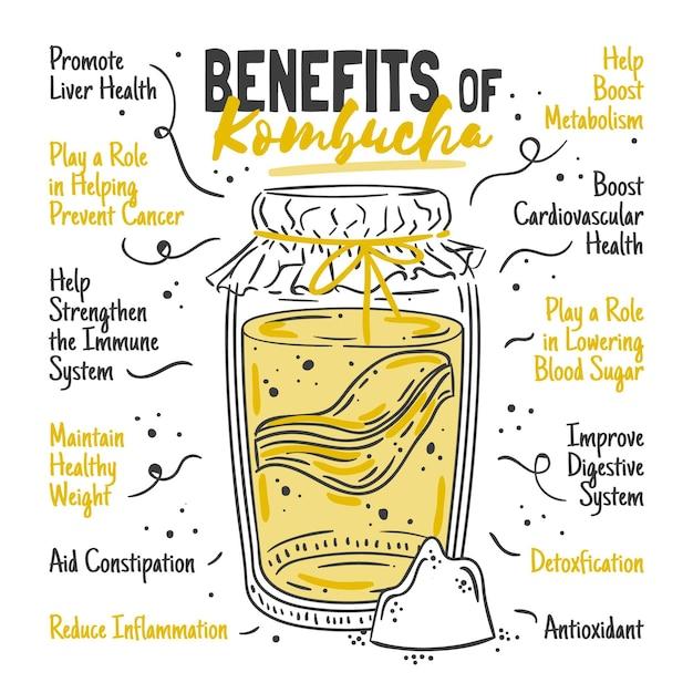 Benefícios do chá de kombuchá Vetor grátis