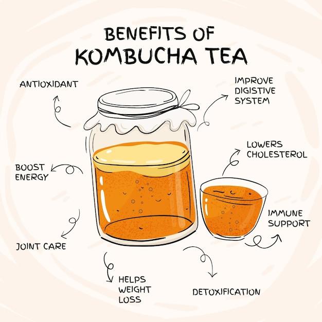 Benefícios do chá de kombuchá Vetor Premium
