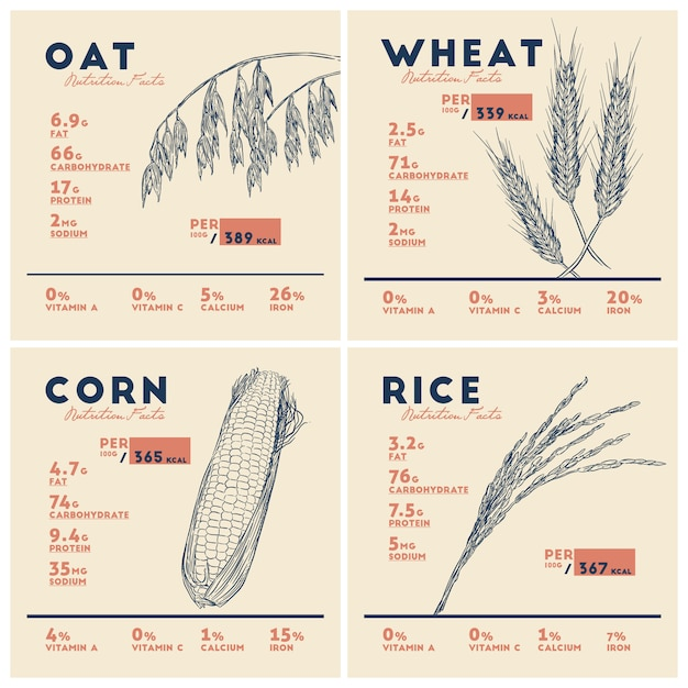 Benefícios para a saúde de cereais, arroz, trigo, aveia e milho. Vetor Premium