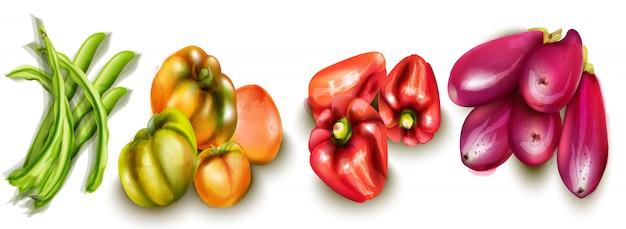 Berinjelas de legumes e aquarelas de tomates Vetor Premium